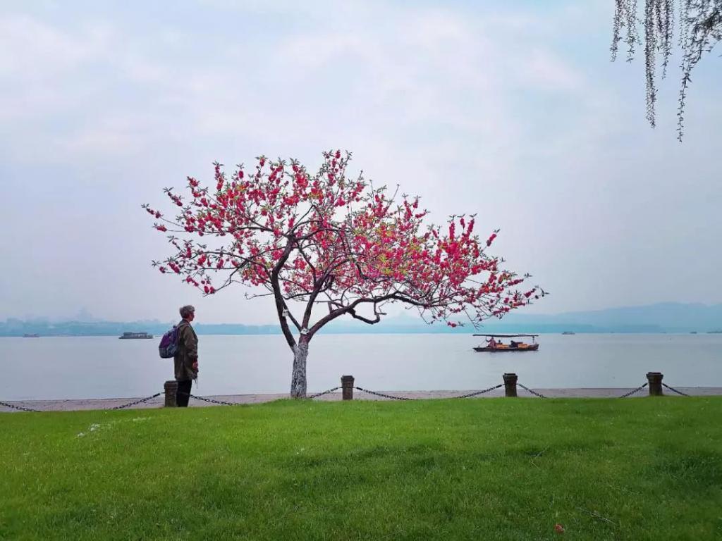 杭州市 · 西湖区 · 孤山 浙江省杭州市西湖区西湖街道杭州西湖风景