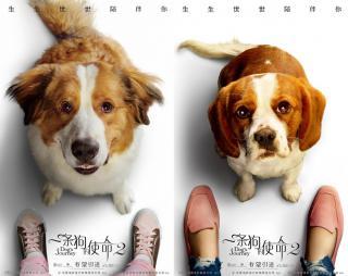 一条狗的使命2免费观看
