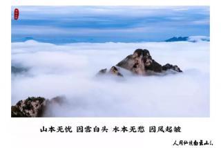 郑州这碗小时粉搬来了成都味道,排队2个肥肠作用子的鲫鱼功效图片