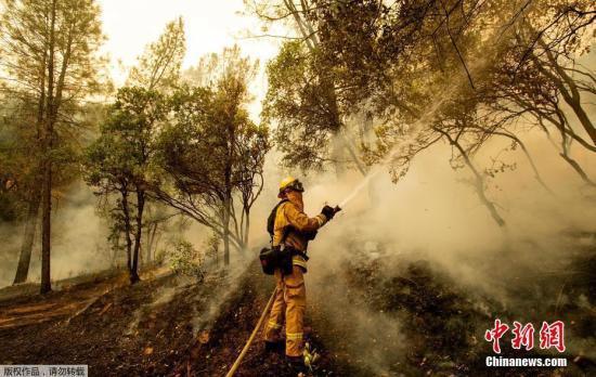 加州規模最大山火調查出爐 男子因撲黃蜂誤釀大火