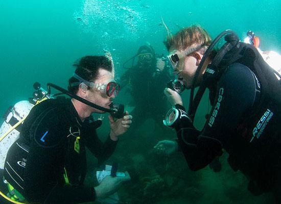 梦见和别人一起潜水