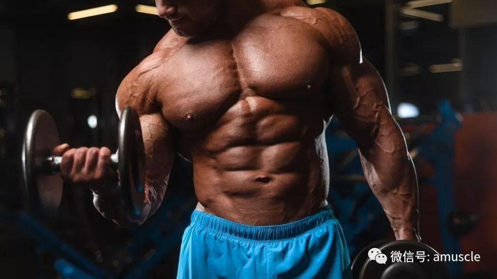 别把增肌变增肥,你最需要做好哪些步骤?