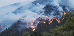 郴州市政府约谈4个森林火灾多发县