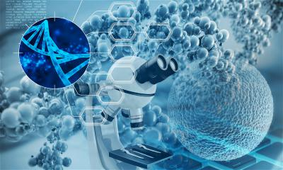 生物科技公司 RootPath 完成 1100 万美元 A 轮融资,经纬中国、元禾原点共同领投