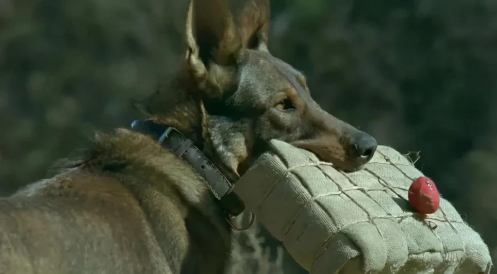 《犬王》影评:这部电影到底做了什么,得罪了 2 万多人?