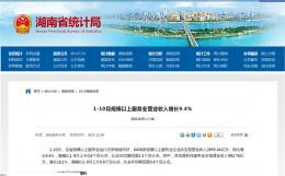 1-10月湖南規模以上服務業營業收入增長9.4%