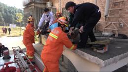 """郴州一男子从四楼失足坠落,被救下后说""""不知道怎么摔下去的"""""""